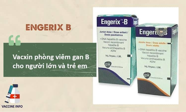 Vacxin Engerix B