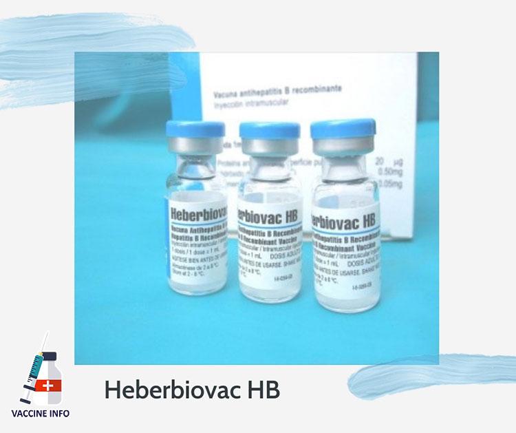 Heberbiovac HB là gì?